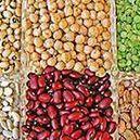 Bean & Veggie Snacks