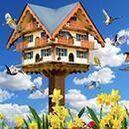 Bird & Wildlife Accessories
